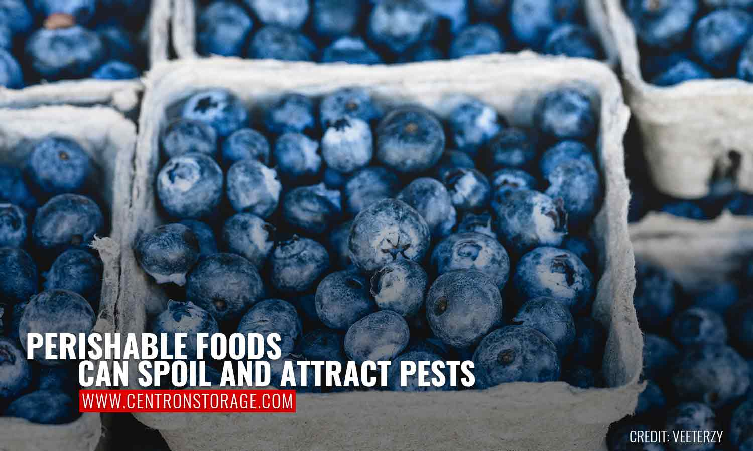 Perishable foods can spoil and attract pests
