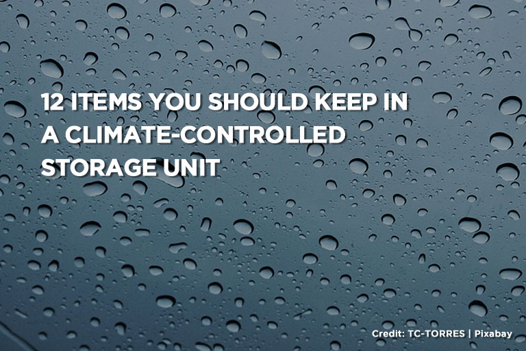 12 Items You Should Keep in a Climate-Controlled Storage Unit